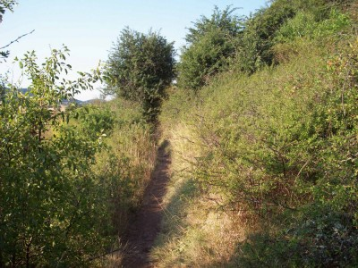 Chemin étroit après la Roche
