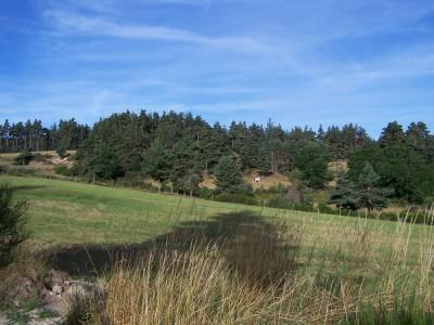 Beau paysage de la Margeride après Saugues