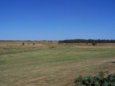 Plateau de l'Aubrac 2